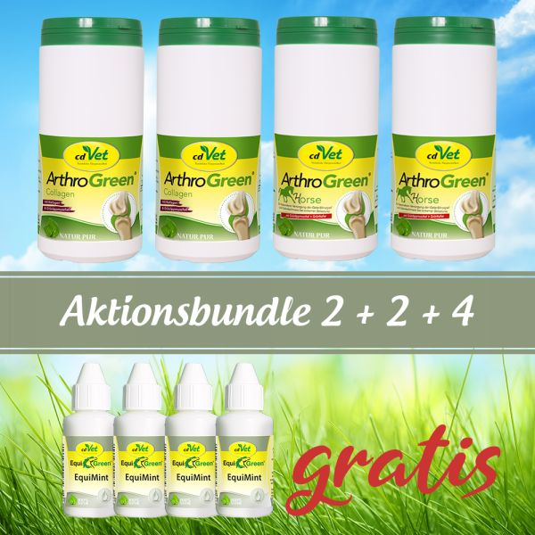 "Aktions-Bundle PFERD ""Arthrogreen "" 2+2+4"